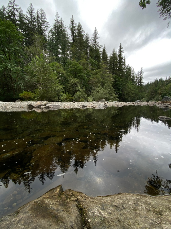 The still-as-glass river with the evergreens mirrored off of it.